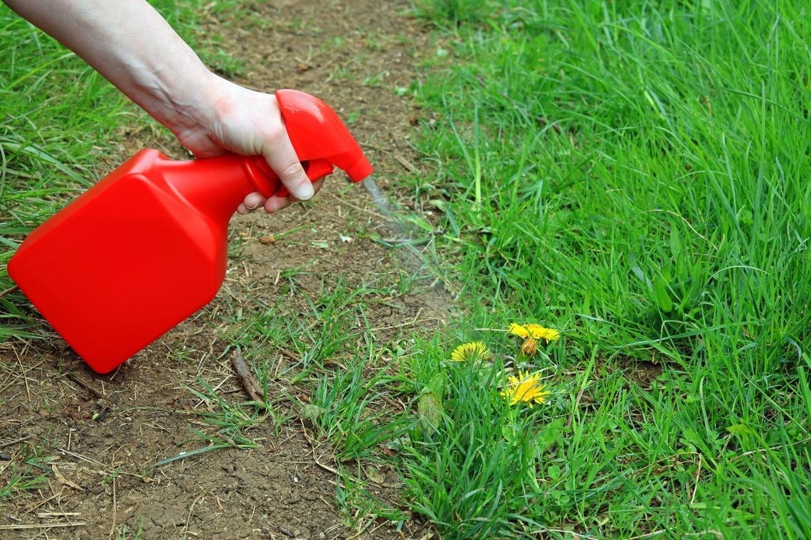 roundup-weedkiller-lawsuit-verdicts